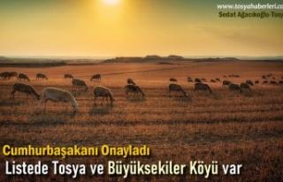 Cumhurbaşkanlığı Kararnamesinde Tosya ve Büyüksekiler...