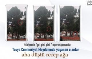 Tosya'da İtfaiyenin Kedi Kurtarma Operasyonunda...