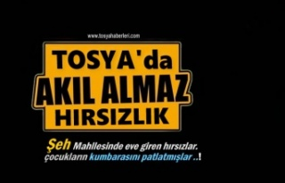 TOSYA'DA AKIL ALMAZ HIRSIZLIK