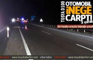 TOSYA D100'DE OTOMOBİL İNEĞE ÇARPTI 3