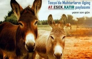Tosya'da Muhtarlar Sosyal Paylaşımdan Önemle...