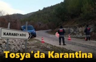Tosya'da 1 Köy Karantinaya Alındı