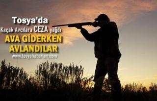 Tosya'da Kaçak Avcılar Ava Giderken Avlandı