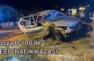 TOSYA D-100'DE FECİ TRAFİK KAZASI