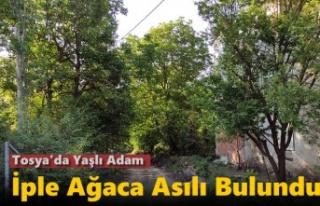 TOSYA'DA YAŞLI ADAM AĞACA ASILI BULUNDU
