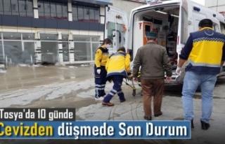 TOSYA'DA CEVİZ AĞACINDAN DÜŞMEDE ÖNEMLİ...