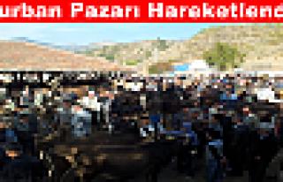 Tosya'da Kurban Pazarı Hareketlendi
