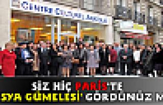 Paris'te Tosya Gümeleleri Sergisi