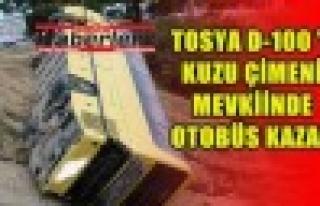 Tosya D-100  Karayolunda Otobüs  Kaza Yaptı