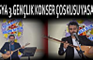 Tosya'da 3.Gençlik Konseri Çoskusu Yaşandı