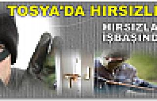 Tosya'da Hırsızlık…