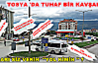 Tosya'da Tuhaf bir Kavşak