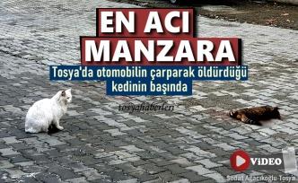 Tosya'da Gün İçinde Yaşanan En Acı Manzara
