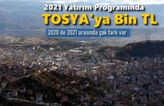 2021 YILI DEVLET YATIRIM PROGRAMINDA TOSYA NE KADAR YATIRIM ALDI