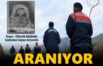 Tosya-Ekincik Köyünde kaybolan bayan heryerde aranıyor