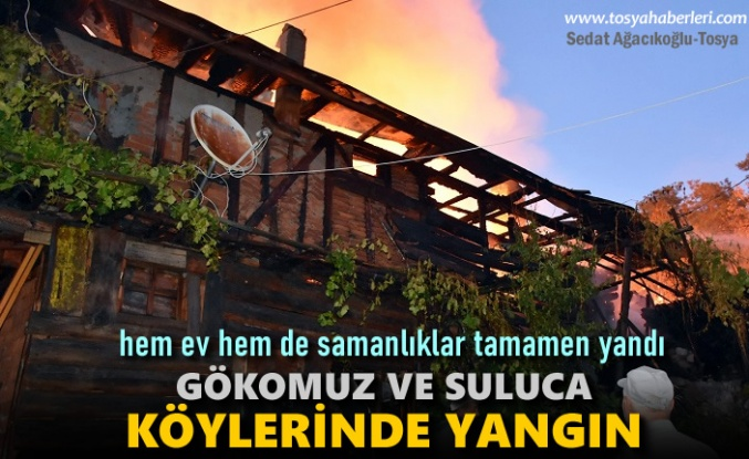 Tosya'da Bir Günde İki Köyde Yangın
