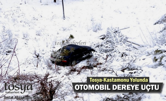 TOSYA YOLUNDA OTOMOBİL DEREYE UÇTU