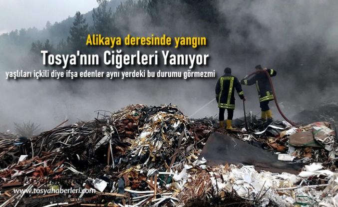 TOSYA'NIN CİĞERLERİ YANIYOR