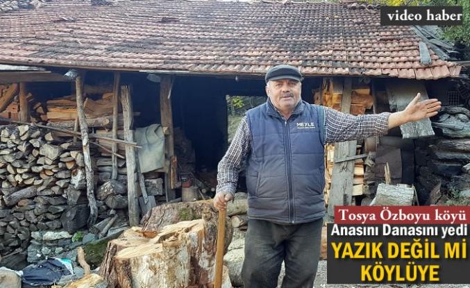 Tosya Özboyu köyüne Üç Yıldır Çivi Çakılmadı