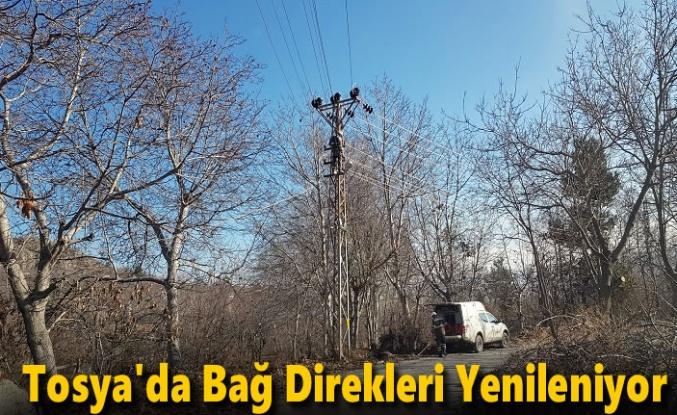 Tosya'da Bağların Elektrik Direkleri Yenileniyor