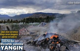 Tosya Mezarlıkta Yangın